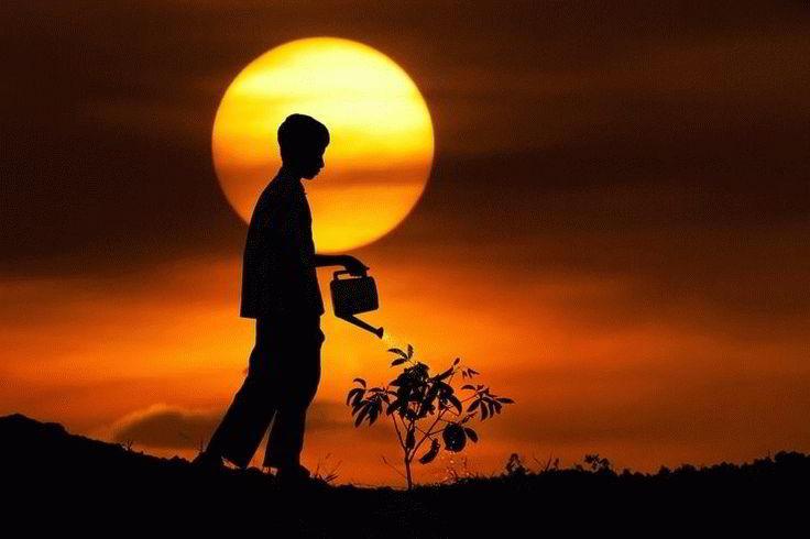 Основные духовные ценности суфизма