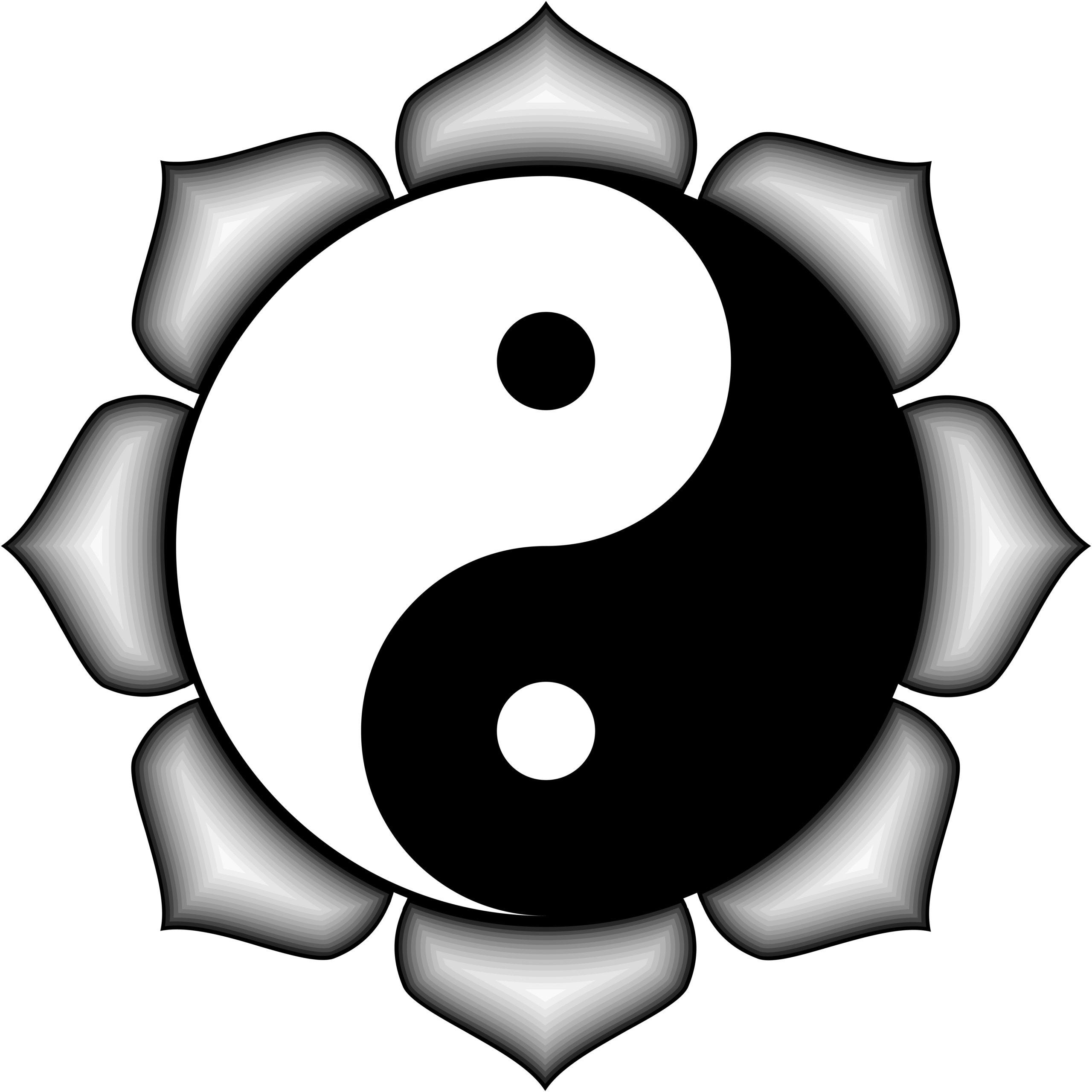 Медитация «цветок лотоса» – с чего начать