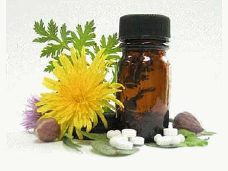 Фитотерапия и гомеопатия в чем отличия