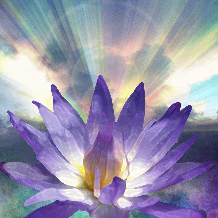 Хоопонопоно Медитация очищения программ памяти