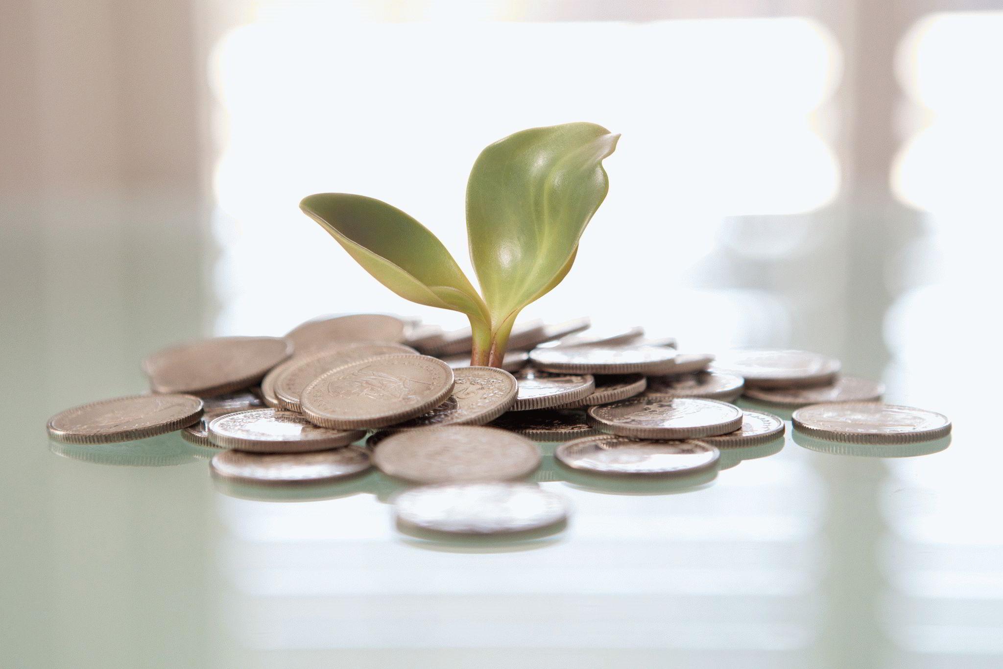 Как привлечь деньги — талисманы своими руками