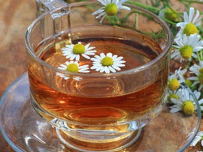 Фитотерапия — травяные сборы от разных болезней