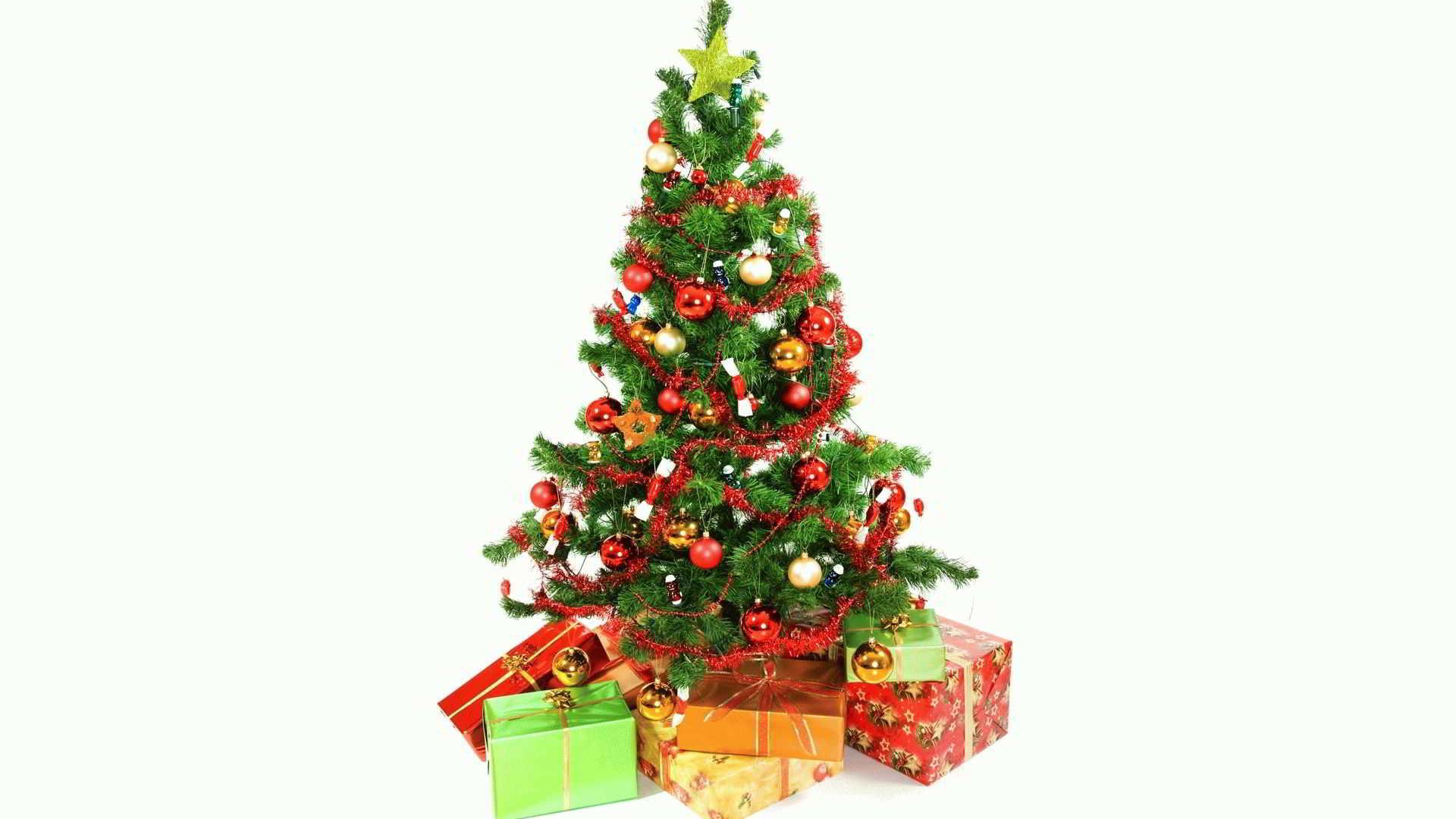 К чему снится елка, живая или искусственная?