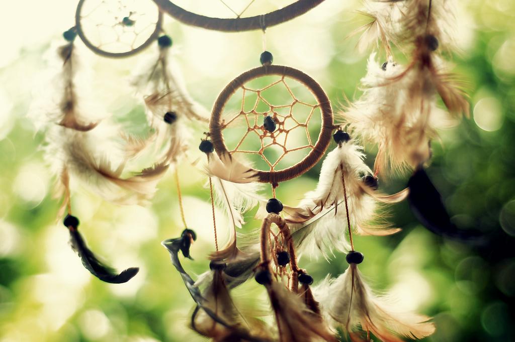 Как понять сон — «спастись от погони, убегая и прячась»
