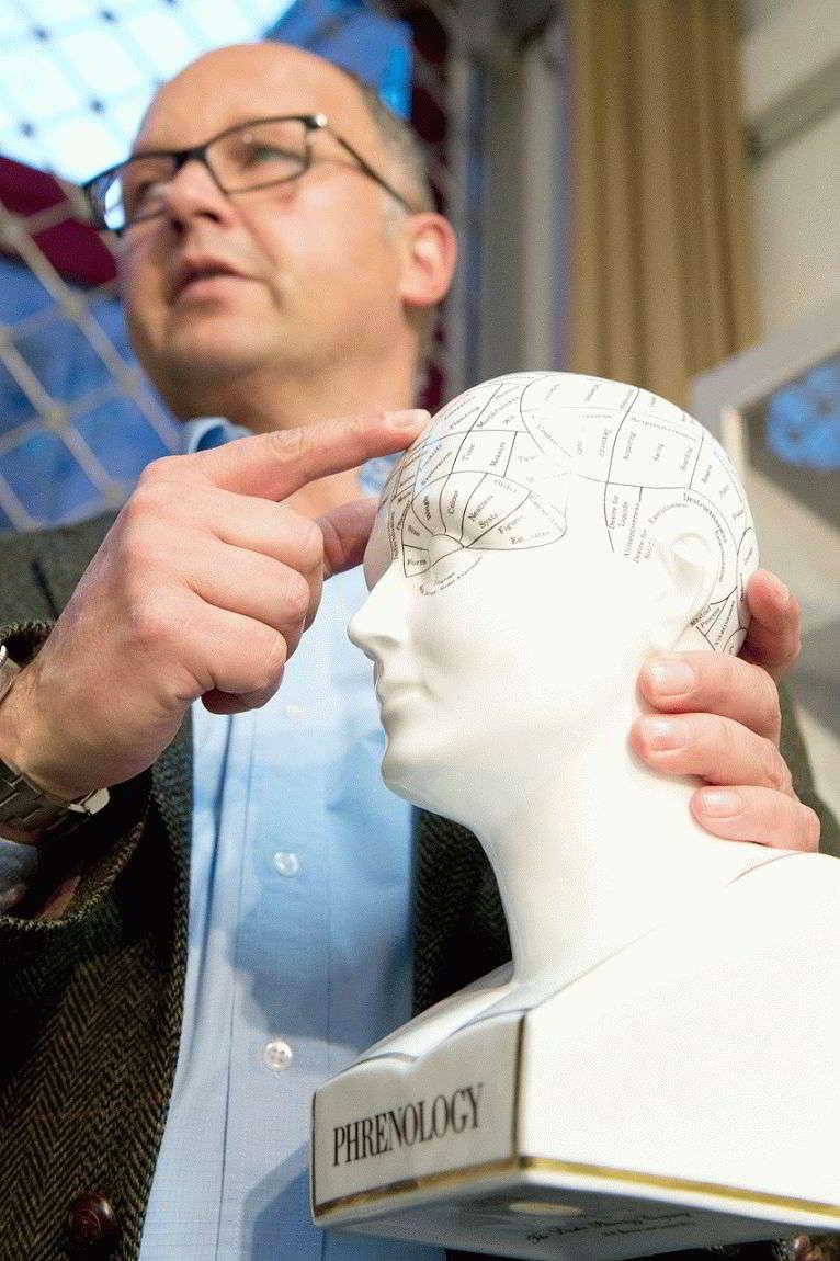 Френология – какие есть зоны на лице человека