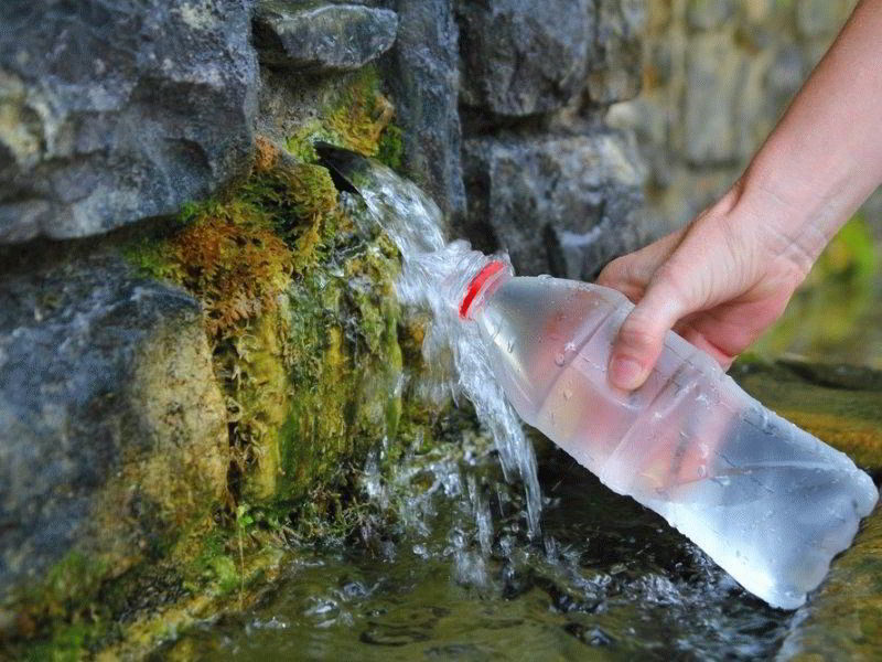 Биолокация: найти воду на участке