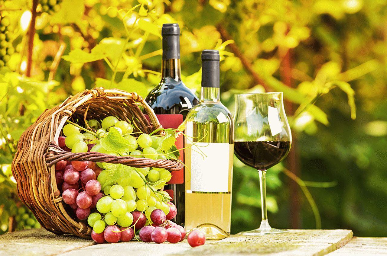 Суфизм в исламе притча о винограде