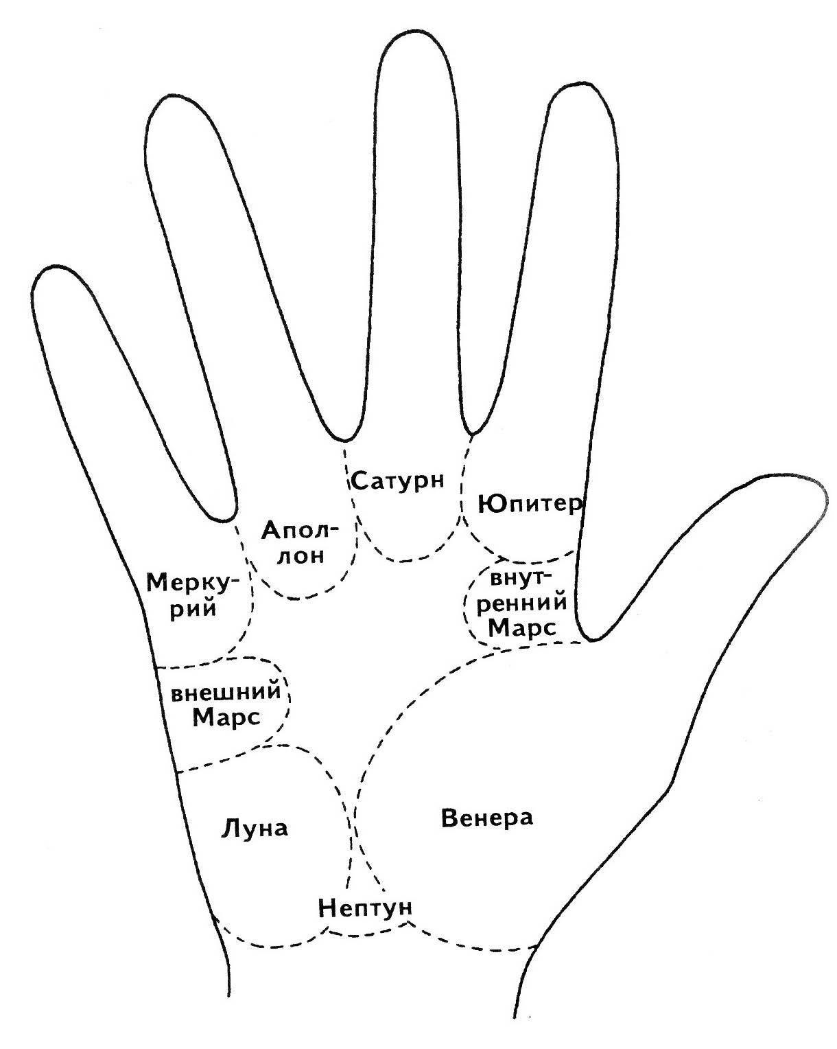 Секреты и значение «холмов Марса» на руке