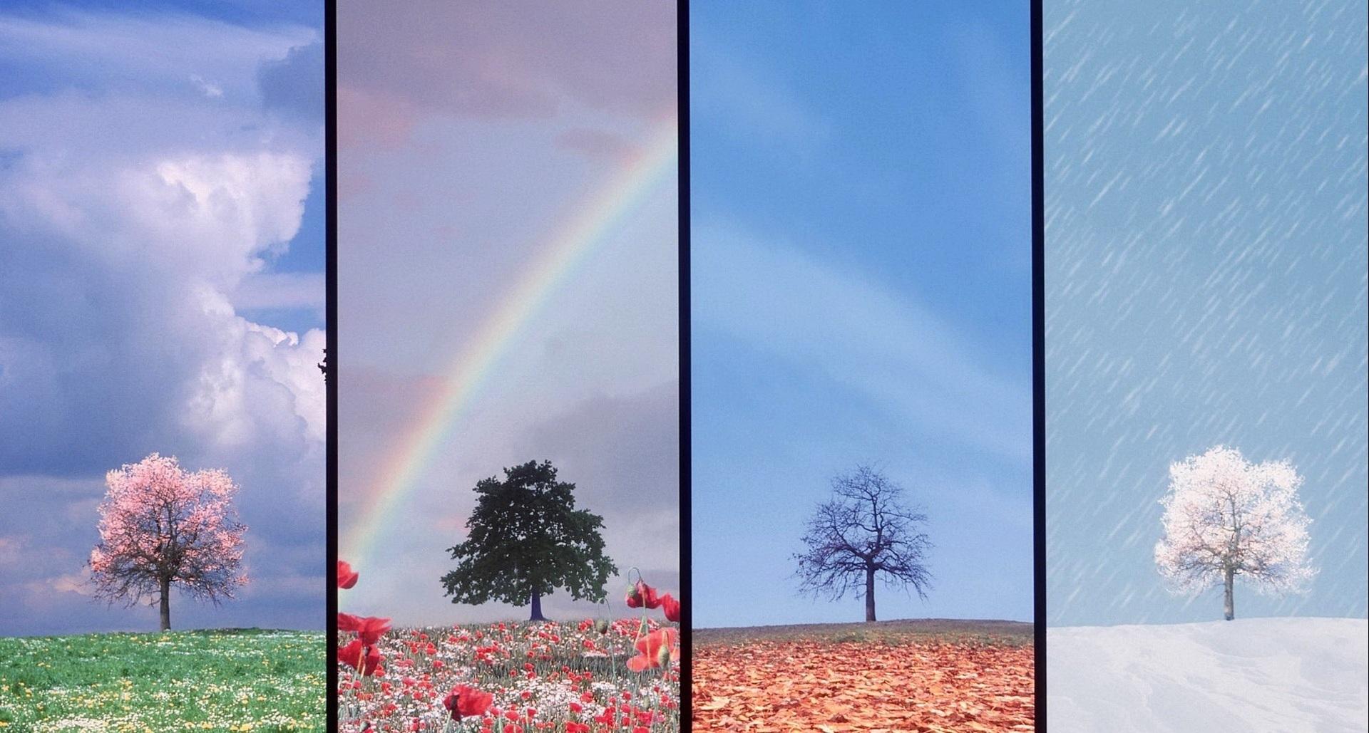 Народные приметы о погоде в разное время года